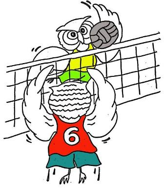 gufovolley